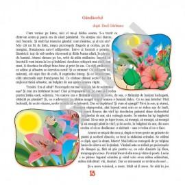 Magia poveștilor, Clasa I - Antologie de texte literare
