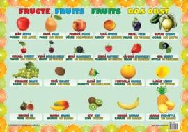 Plansa Fructe