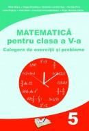 Matematică pentru clasa a V-a, Culegere de exerciții și probleme