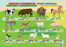 Plansa Animale Domestice