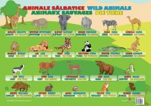 Plansa Animale Sălbatice