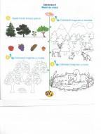 Micul Explorator, Matematică și explorarea mediului, Clasa Pregătitoare - Fișă de lucru