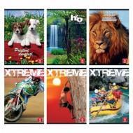 Caiet A5 Aritmetica 48 File Color Pigna