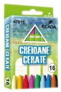 Creion color 16 cerat Ecada