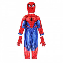 Costum Spider-Man