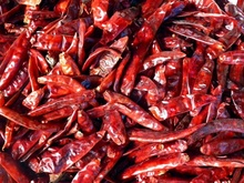 TOPOP CHILLIES WHOLE KASHMIRI 100G