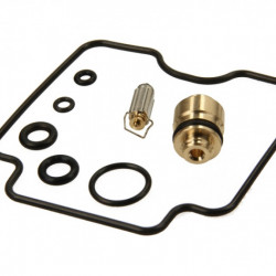 Kit reparatie carburator Tourmax CAB-S16