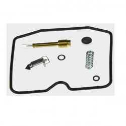 Kit reparatie carburator Tourmax CAB-K4
