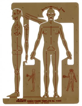 MALE HUMAN FIGURE images