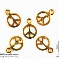 Gold Charm 4