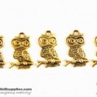 Gold Charm 3