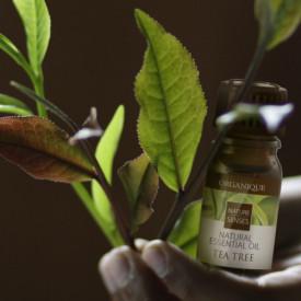 Ulei aromatic ceai, Organique, 7 ml
