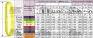CHINGI DE RIDICARE CIRCULARE - 3 tone - 2 metri lungime