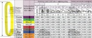 CHINGI DE RIDICARE CIRCULARE - 4 tone - 2 metri lungime