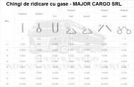 CHINGI DE RIDICARE CU GASE(URECHI) - 2 tone