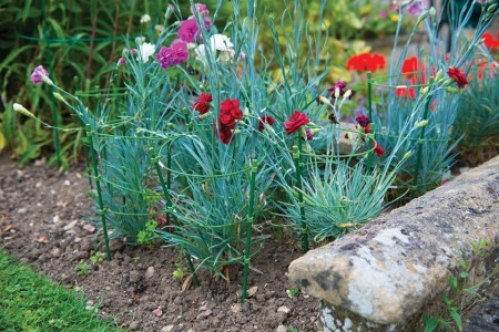 Suport plante gradina, 3 inele, 450mm, Silverline
