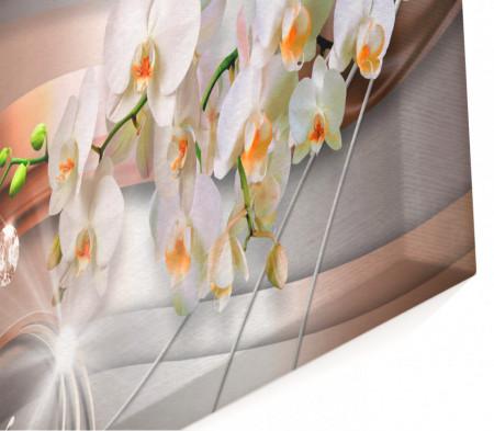 Multicanvas, Orhidea albă și un fundal maro