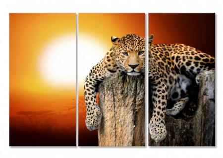 Tablou modular, Leopardul la apusul soarelui
