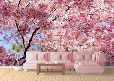 Fototapete, Flori roz pe fundalul cerului