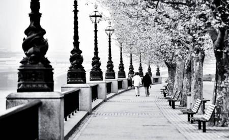 Fototapete, Plimbare prin parcul de iarnă