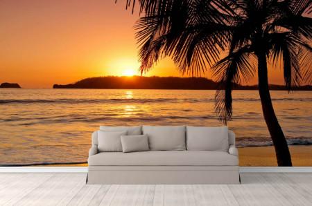 Fototapete, Silueta de palmier la apusul soarelui