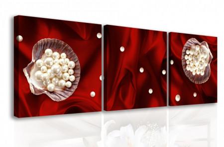 Multicanvas, Flori albe pe un fond roșu