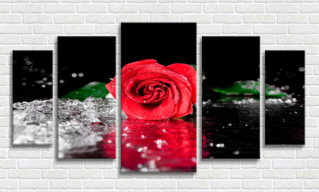 Tablou modular, Trandafir roșu cu stropi de rouă