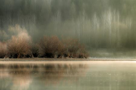 Fototapete 3D, Lacul lângă pădure