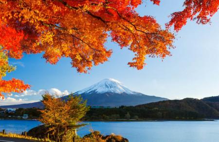 Fototapete, Peisaj de toamnă frumos