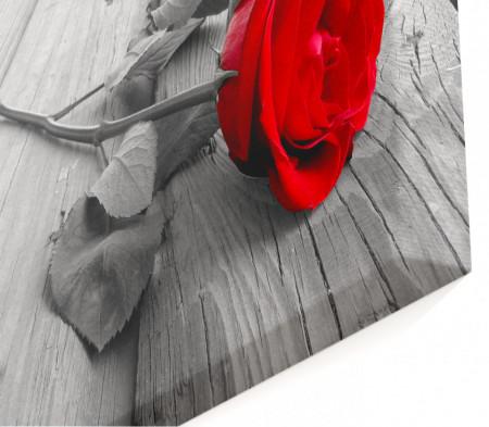 Multicanvas, Trandafirul roșu pe fundalul orașului gri