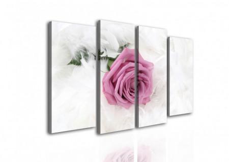 Multicanvas, Trandafirul roz pe un fundal alb