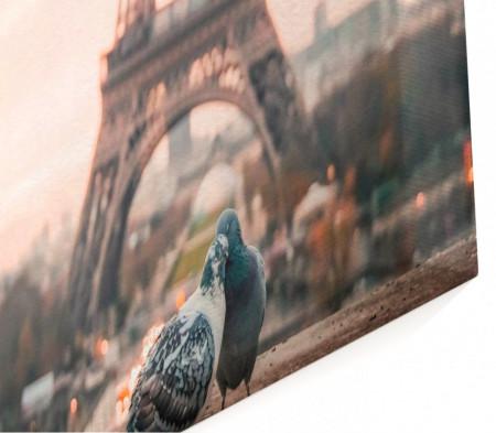 Multicanvas, Porumbeii îndrăgostiți