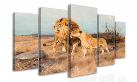 Multicanvas, Leii la vânătoare