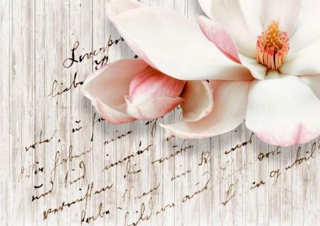 Fototapet, O scrisoare de dragoste