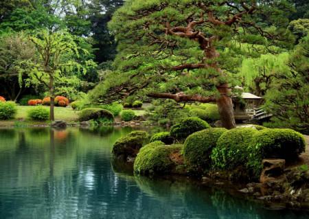 Fototapete Frumusețea naturii