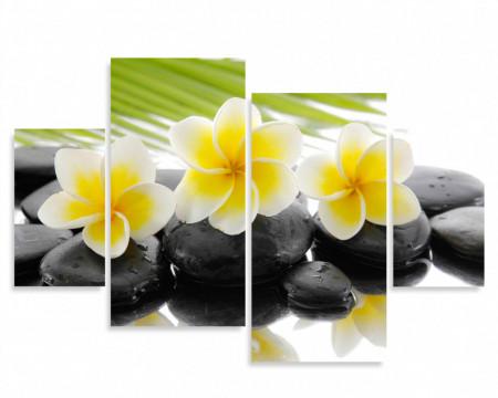 Multicanvas, Flori galbene pe pietre negre