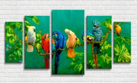 Multicanvas, Varietate de papagali