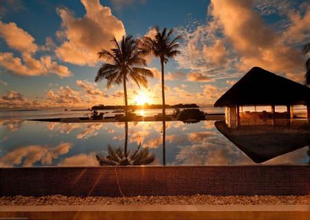 Fototapet, Palmieri și apusul de soare