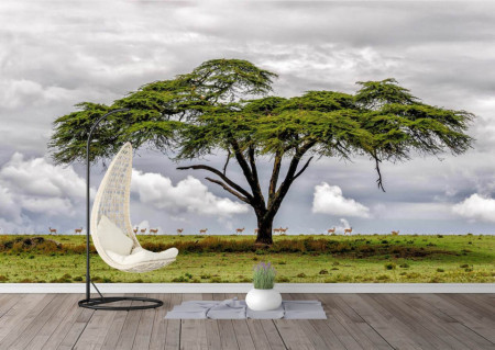 Fototapet, Un copac în câmp