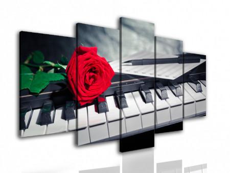 Multicanvas, Trandafirul roșu pe cheile de pian