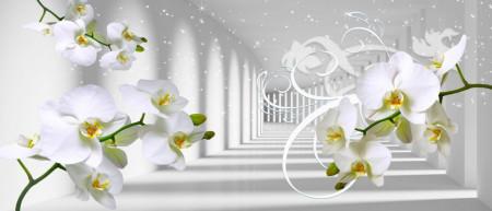 Fototapete 3D, Orhidee pe fundalul tunelului luminos