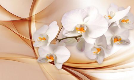 Multicanvas, Orhidea pe un fundal bej