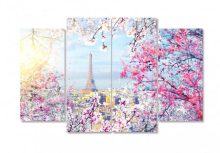 Multicanvas, Parisul primăvara