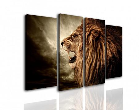 Multicanvas, Un leu pe un fundal întunecat
