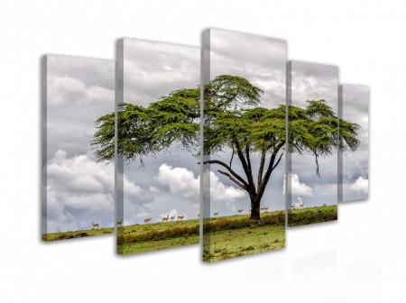 Tablou modular, Un copac exotic în savana