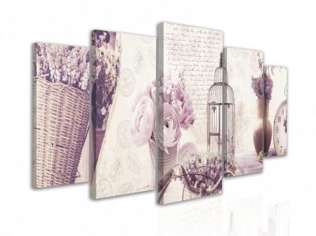 Multicanvas, Provence roz