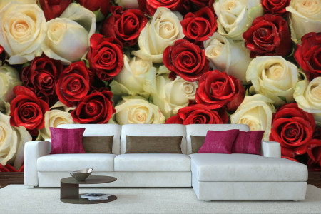 Fototapet, Trandafiri roșii și albi