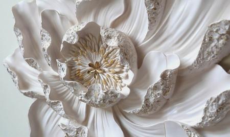 Fototapete 3D, O floare albă de nufăr.