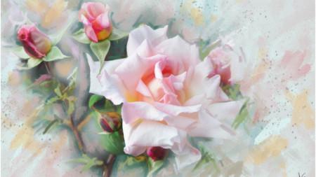 Multicanvas, Flori delicate