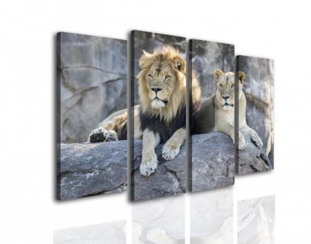 Tablou modular, Leul și leoaica stau pe piatră